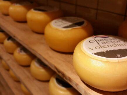 Afbeelding - Cheese Factory Volendam